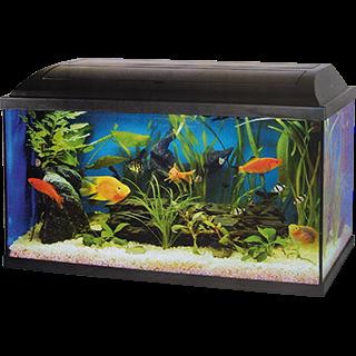 Obrázok pre kategóriu Cat-Gato skleněná akvária