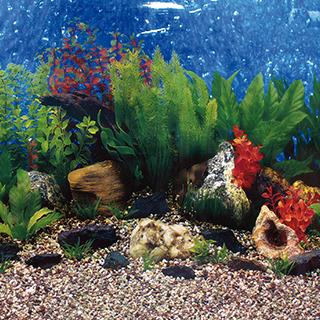 Obrázok pre kategóriu Aqua Excellent tapety