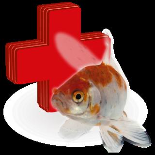 Obrázok pre kategóriu léčiva pro jezerní ryby