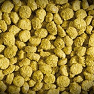 Obrázok pre kategóriu suché krmivo pro plazy