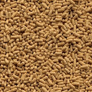 Obrázok pre kategóriu krmivo pro jezerní ryby
