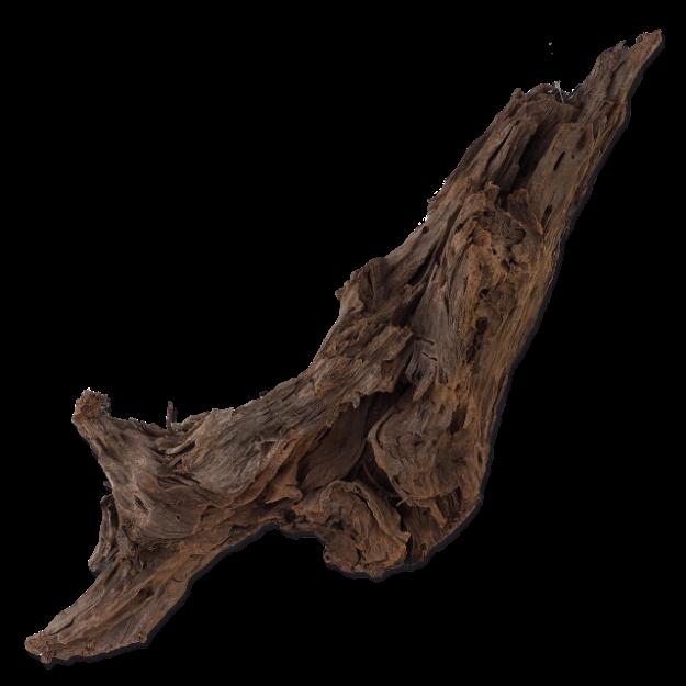 Koren REPTI PLANET Driftwood Bulk L